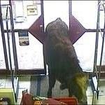 Bull caught on CCTV in supermarket (Система охранного видеонаблюдения в супермаркете засняла быка)