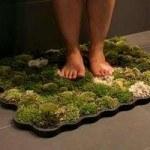 Mat made of moss stays alive with the help of bath water (Коврик, сделанный из мха не увядает благодаря воде для мытья)
