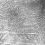 Is it possible to change our fingerprints? (Возможно ли изменить отпечатки пальцев?)